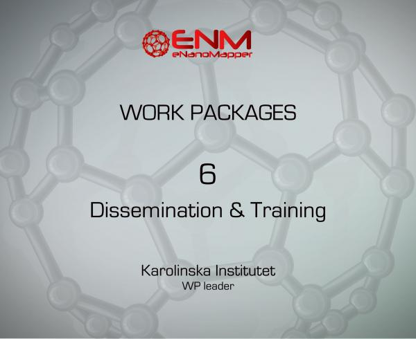eNanoMapper Work Package 6 - Dissemination & Training