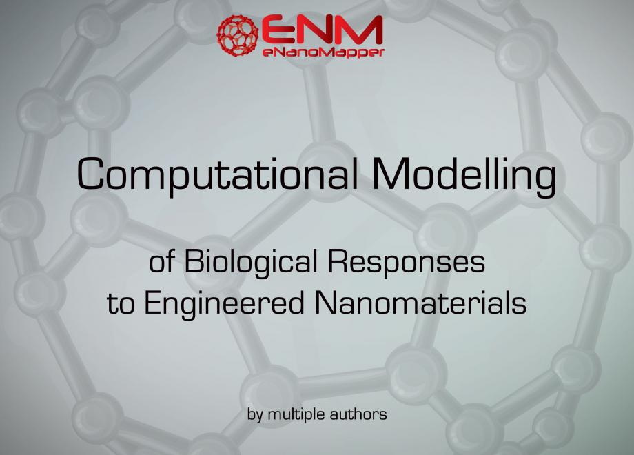 Nanotoxicology: Experimental and Computational Perspectives