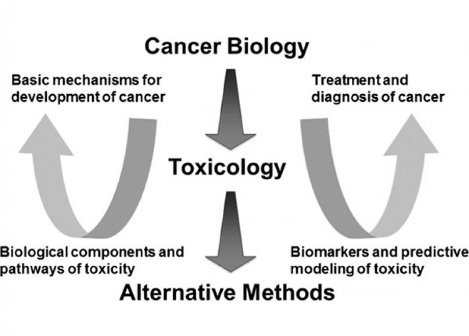 Cancer Biology, Toxicology and Alternative Methods Development Go Hand-in-Hand